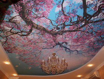 лучшие натяжные потолки с рисунком